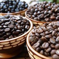 เรื่องที่ควรรู้ก่อนจะทำร้านกาแฟ